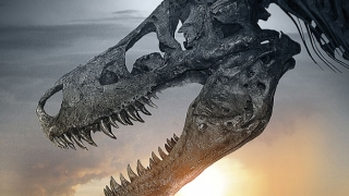 Dinosaur 13 (2014) Full Movie - HD 1080p BluRay