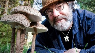 Fantastic Fungi (2019) Full Movie - HD 720p