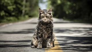 Pet Sematary (2019) Full Movie - HD 1080p BluRay