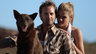 Red Dog (2011) Full Movie - HD 720p