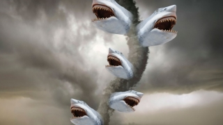 Sharknado (TV Movie 2013) Full Movie - HD 1080p BluRay