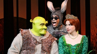 Shrek the Musical (2013) Full Movie - HD 1080p BluRay