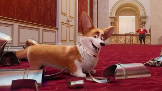 The Queen's Corgi (2019) Full Movie - HD 1080p BluRay