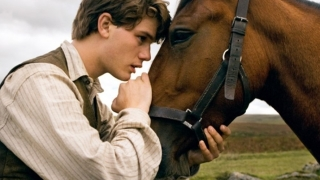 War Horse (2011) Full Movie